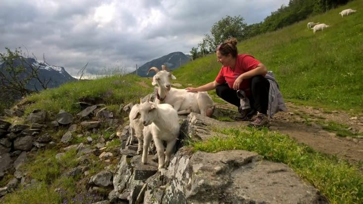 moment privilégier avec nos amis les bêtes...
