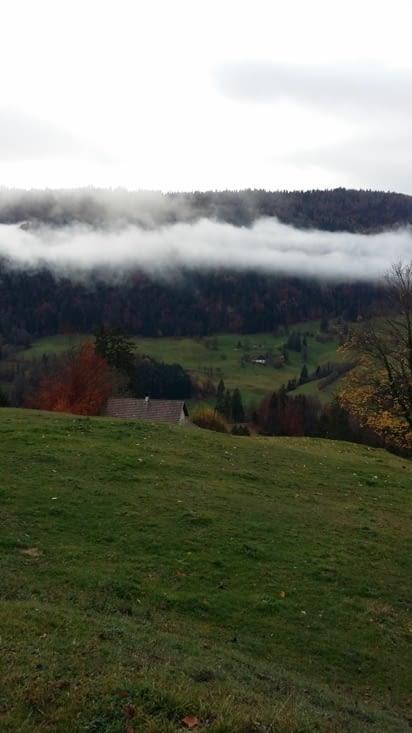 un brouillard typique de cette région