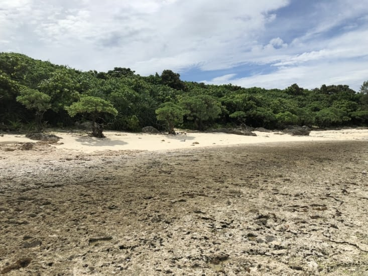 Le littoral de Kabira