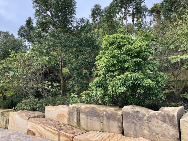 Barangaroo Reserve