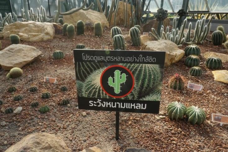 Au cas où vous ne sauriez pas lire le thaï : attention ça pique !
