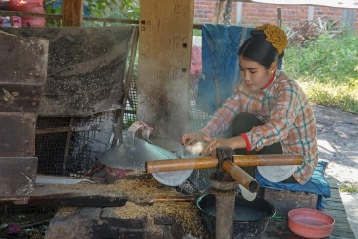 Pose de la feuille de riz sur le bambou