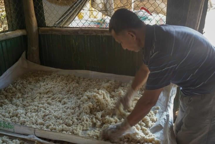 Étalage des brisures de riz