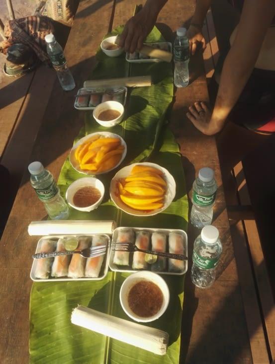 Bamboo Sticky rice, sweet mango et spring rolls