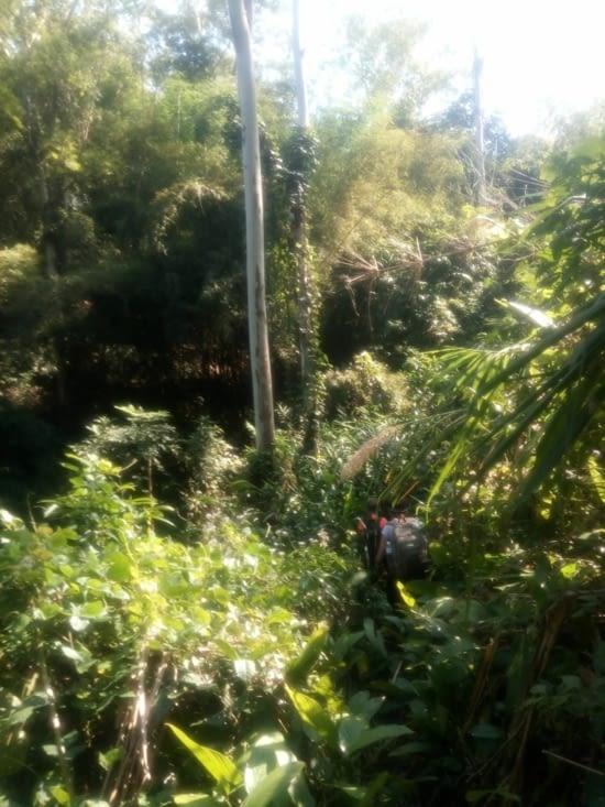 Treck Chiang Rai