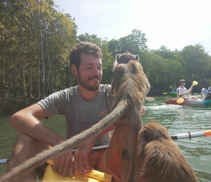 Rencontre avec les singes