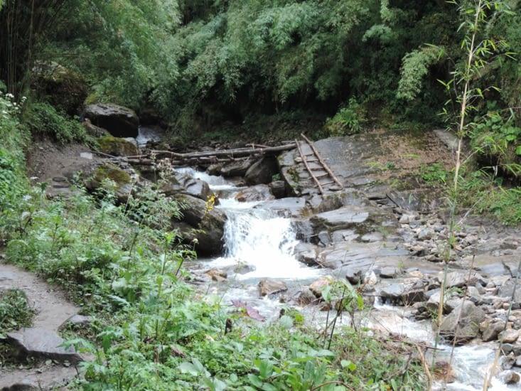 pont en gros rondins de bois