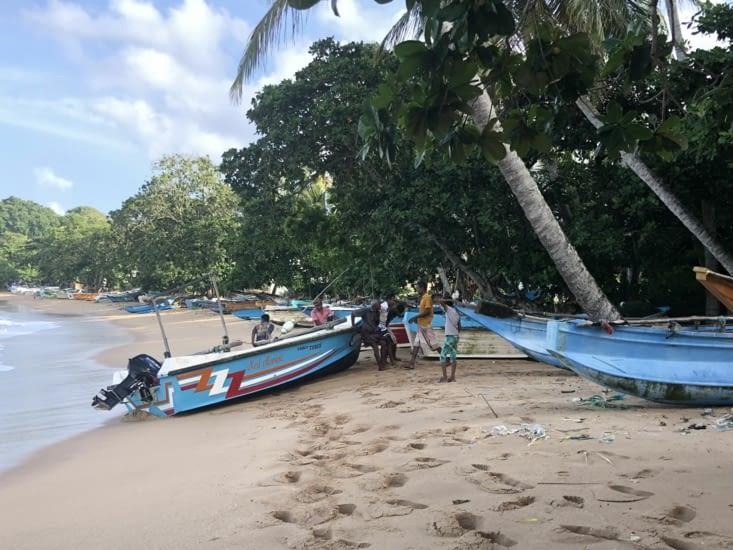 Les pêcheurs en action