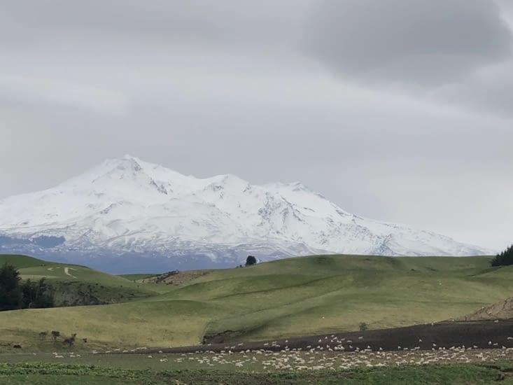 Un beau paysage néo-zélandais