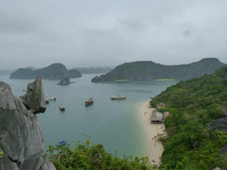 exploration de l'île aux singes