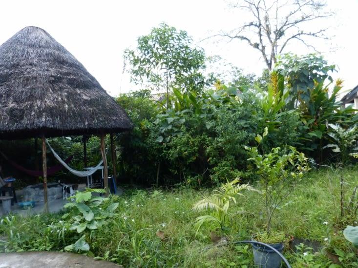 ainsi que le jardin même si c'est la jungle
