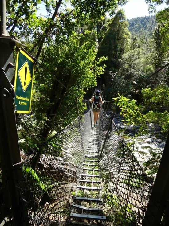Premier pont suspendu