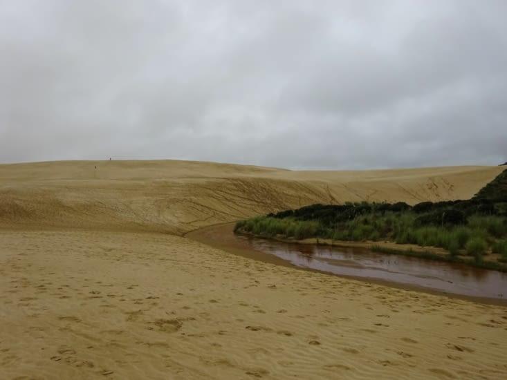 En repartant nous avons croisé la route de ces dunes ...