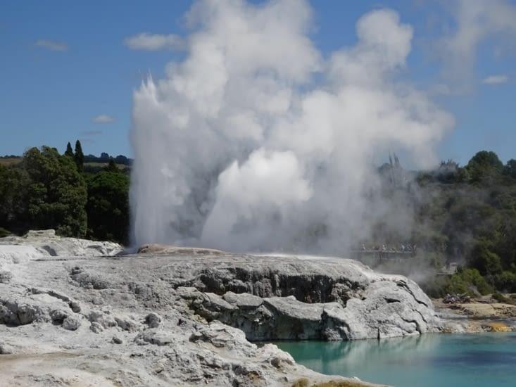 Le plus grand geyser de NZ est ici, environ 30-40m de haut, Il jaillit toutes les heures