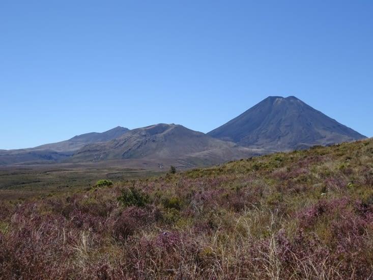 Nous y sommes !! Le mont Ngaurouhoe ou montagne du destin ..
