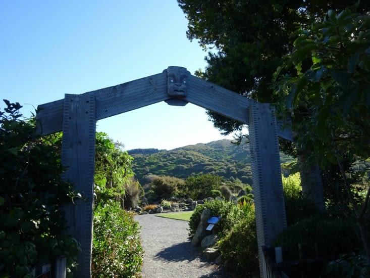 Otari Wilton bush et ses 1200 espèces endemiques de la NZ ! au porte de la ville ..