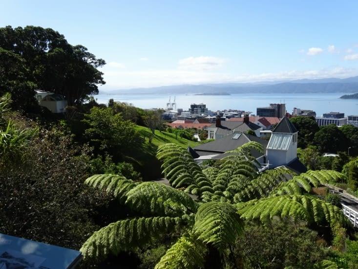 Vue sur la ville de Wellington depuis le jardin botanique