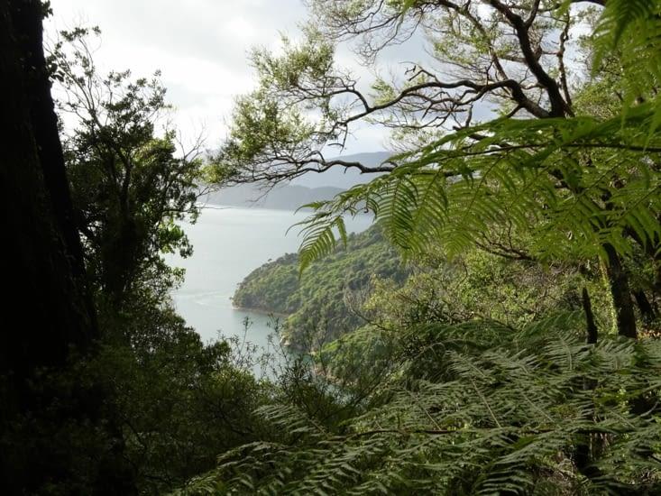 Première vue sur les fiords
