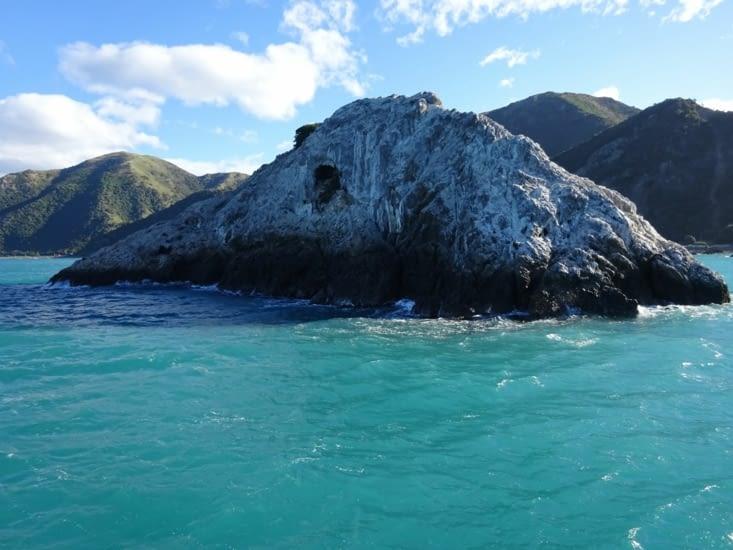 Les belles eaux de kaikoura