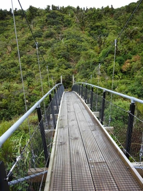 Petite rando dans la région du taranaki