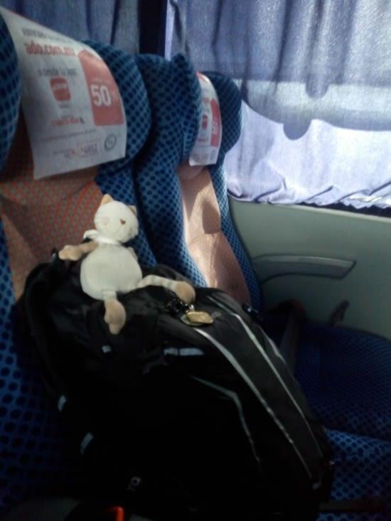 Doudou  Sapiens prend le bus