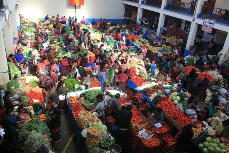 Le marché aux légumes et plantes