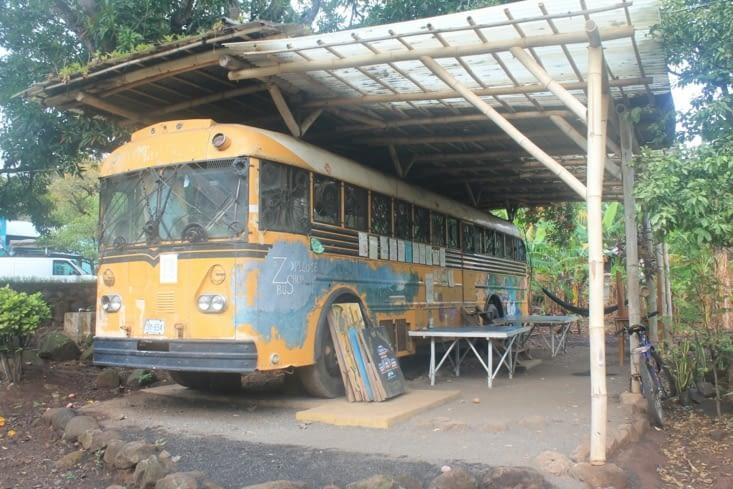 Bus de zopilote