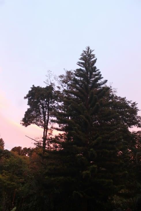 Superbe coucher de soleil avant la Sortie de nuit.