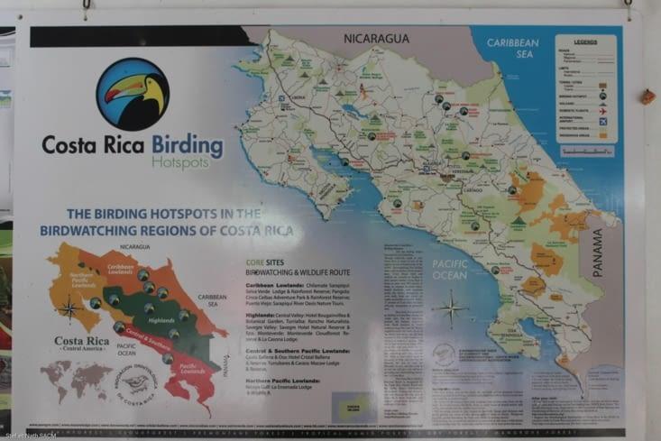 Les oiseaux du Costa Rica