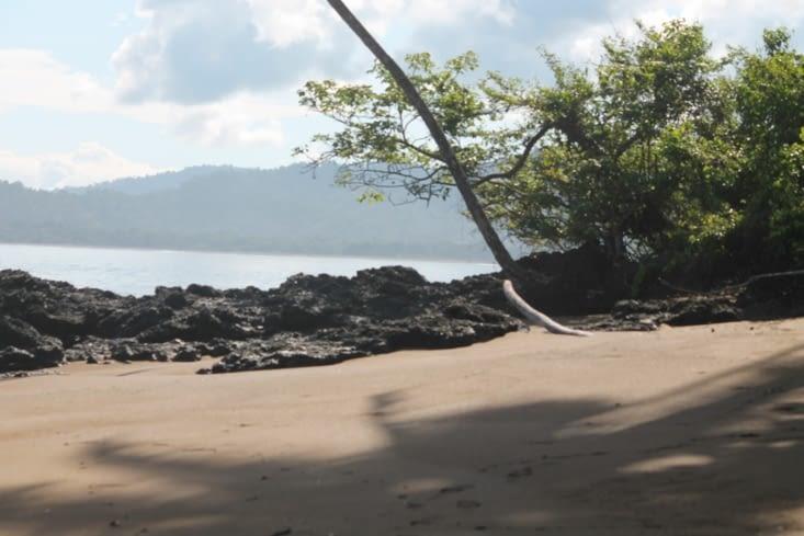 Une plage déserte