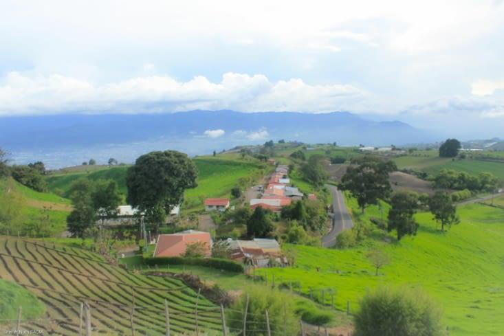 La montée vers les volcans ici les champs sont d un vert étrange!