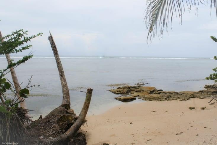 Punta puerto  vargas