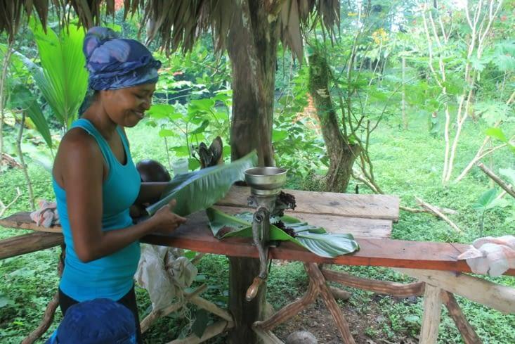 Madrilène à coupée des feuilles de bananiers pour y déposer la pâte de cacao