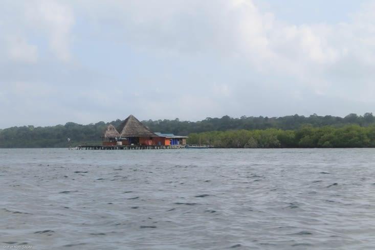 Autre hôtel aux  portes de la mangrove