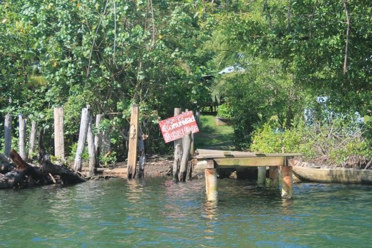 Village amérindien dans cette mangrove