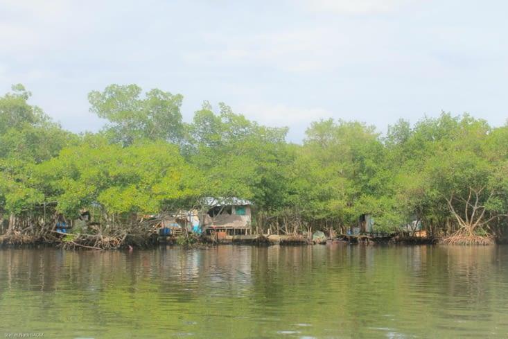 Amirante  port de départ et arrivee pour Bocas  del  Toro