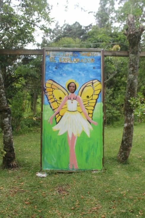 oh un papillon
