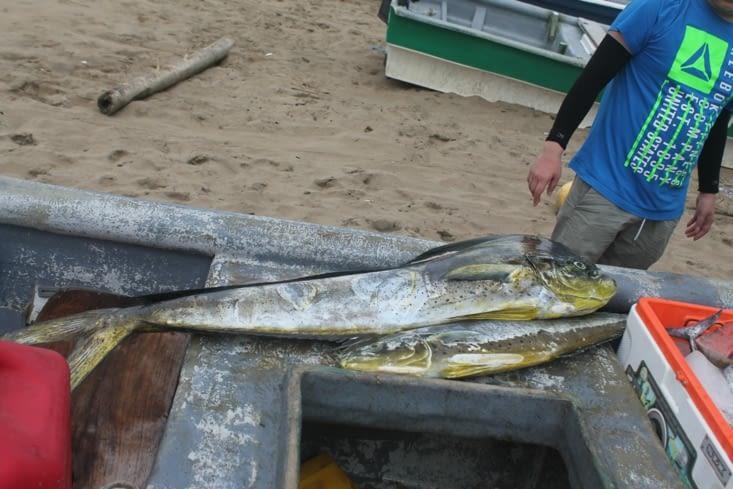 Au retour sur la plage du village, un bateau vend sa pêche