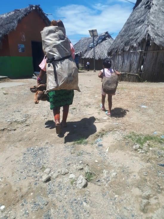 Femmes et filles portent  les sacs de cocos