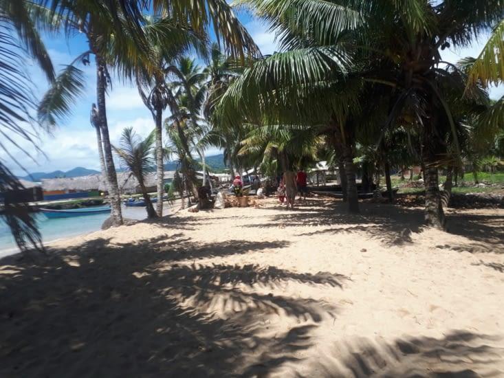 Le tri de la coco