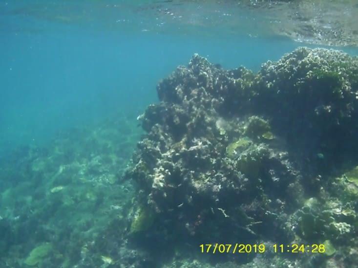Côté sous marins