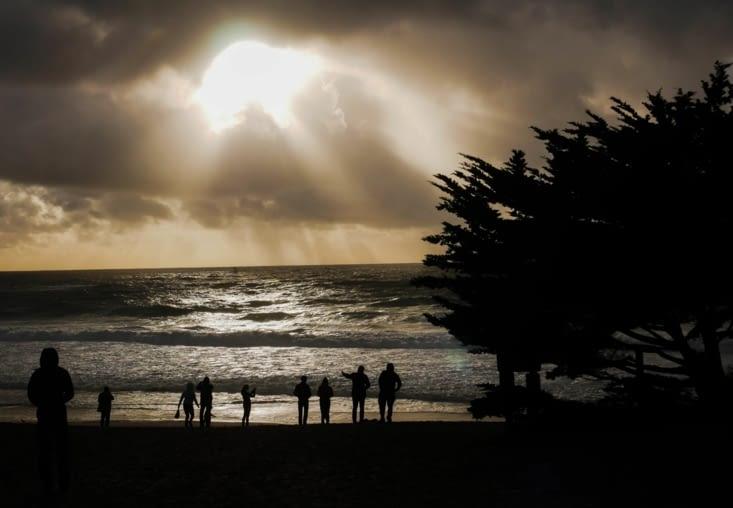 Carmel, mauvais temps sur les pélicans !