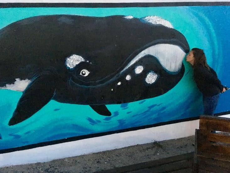 Adopte-une-baleine.com !