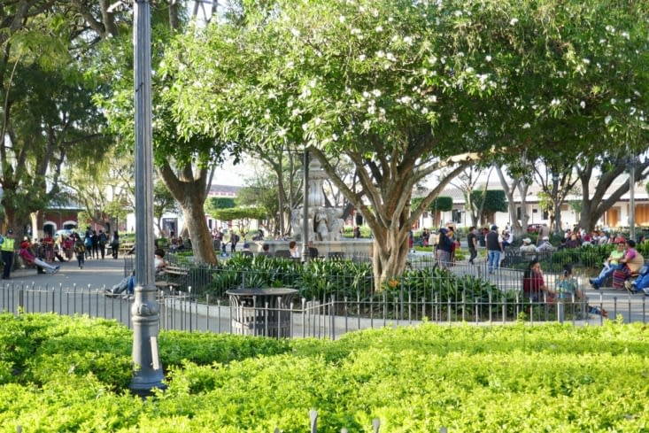 Parc arboré dans le centre ville