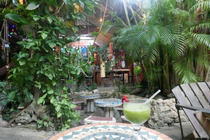 Le patio de l'hotel «Los amigos»