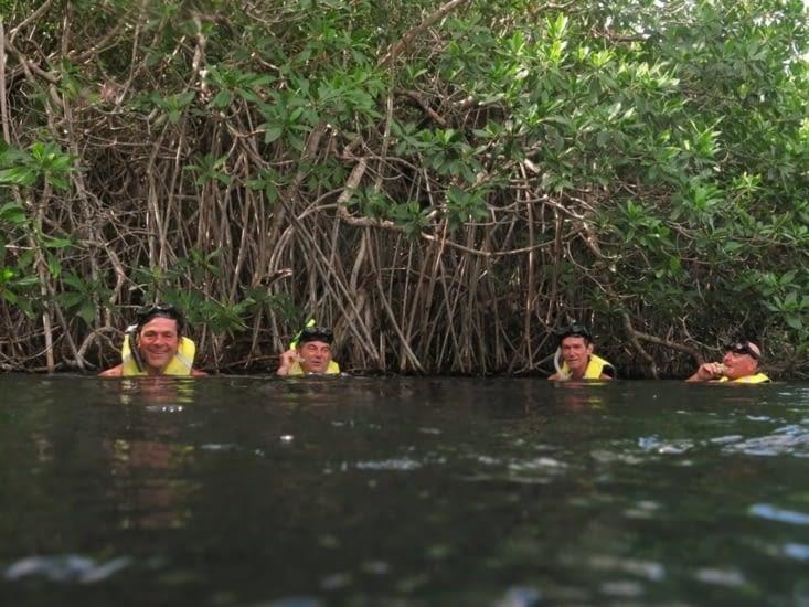 Casa Cenote est à une quinzaine de kilomètre au nord de Tulum.