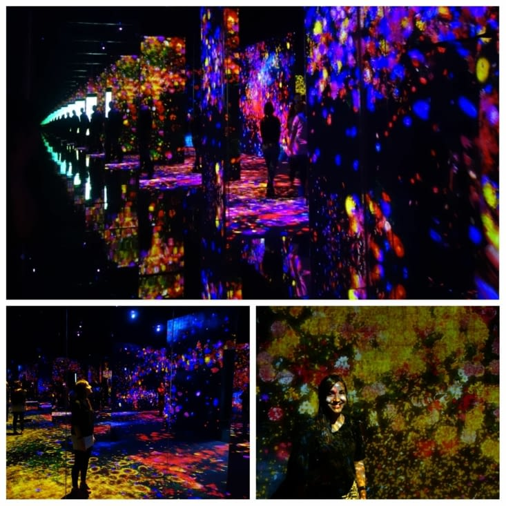 "Exposition immersive ""teamLab : Borderless"""