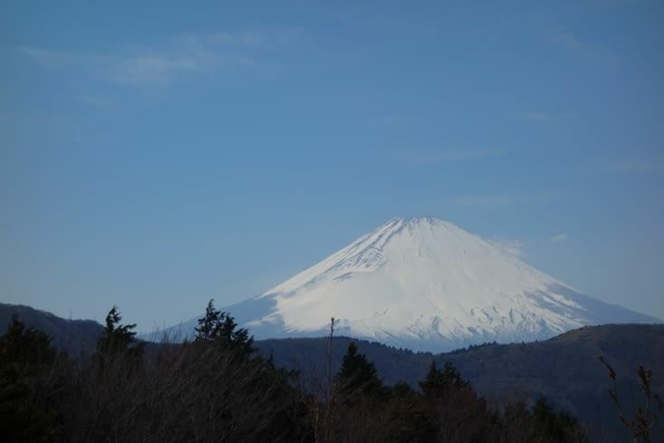 Mont Fuji (vu de Hakone)