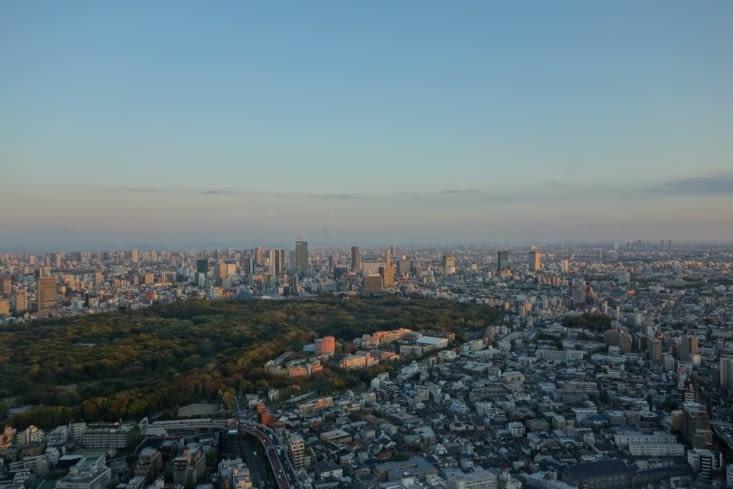 Tokyo, vue sur le parc Yoyogi