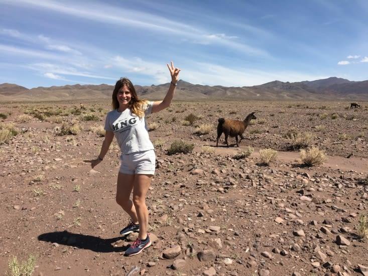 Nos premiers lamas